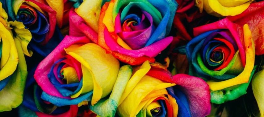 Гадание на розах на отношения